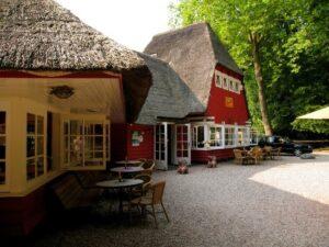 Route Utrechtse Heuvelrug en lunch bij theehuis Rhijnauwen in Bunnik